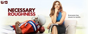 Necessary-Roughness-1