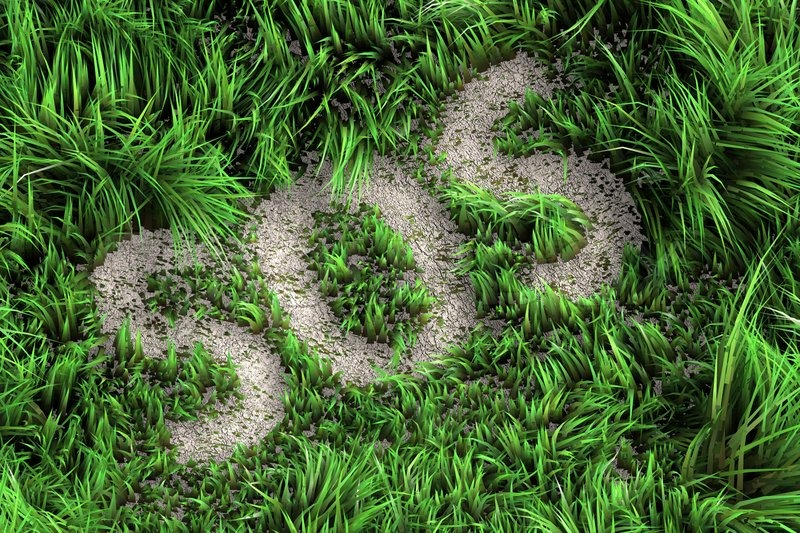 2161937-3d-picture-of-a-grass-sos-ecology-concept (1)