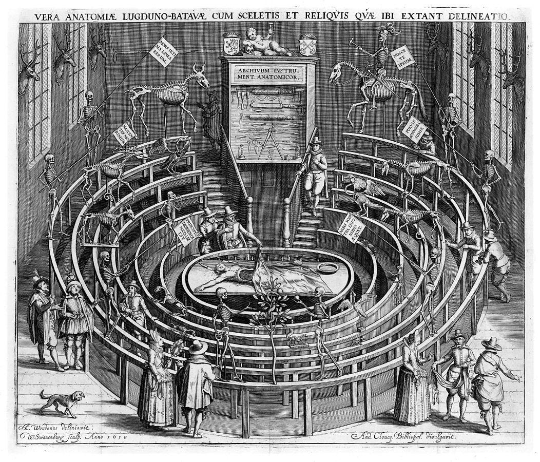 Színház-és-technológia-anatómiai-színház